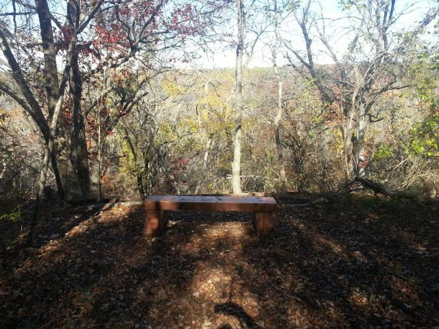 Solitary Bench