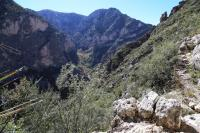 The View of South McKittrick Canyon from The Notch