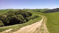 A view of the Briones Crest Trail as is undulates along a ridge towards Briones Peak.