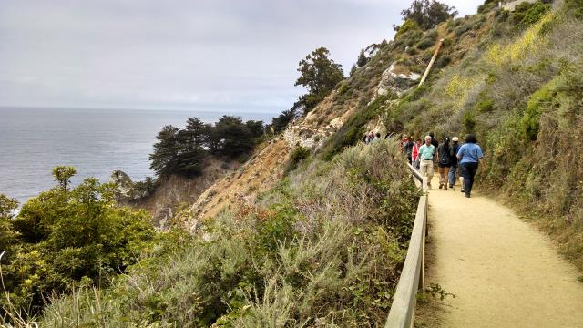 Waterfall Overlook Trail