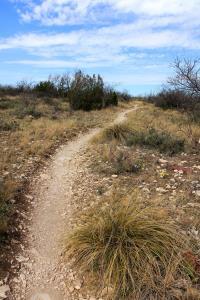 Lanky Lackey Trail