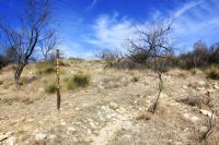 Armadillo Trail signpost
