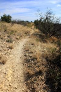 Playground Trail to Bell's Point