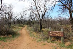 South Shore Tasajillo Trail start