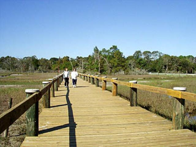 Boardwalk over the wetlands