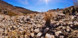 Mariscal Canyon Rim