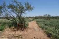 Canyon Rim Trailhead