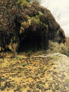Crockett Garden Falls