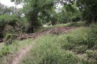 Shady Trail Flood  Debris