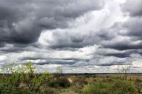 A Few Dark Clouds