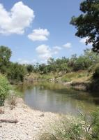 Pond created by the North Concho River