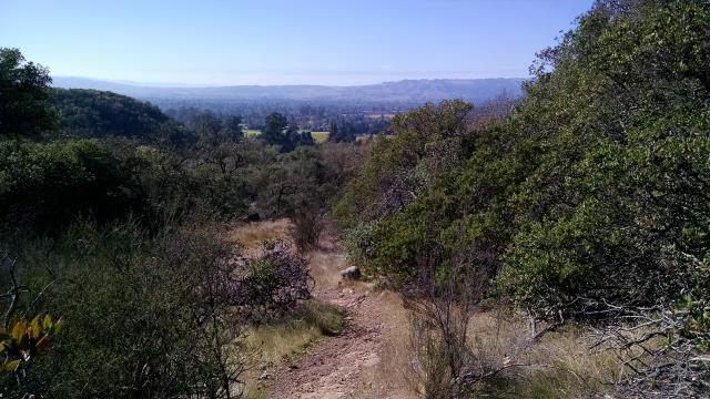 Shortcut Trail