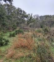 One of many picnic tables along the accessible stretch of trail