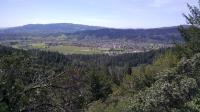 Peering down into Sonoma Valley from the Valley View Trail vista point.
