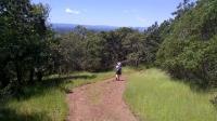 Cobblestone Trail