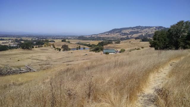 Towards Santa Rosa