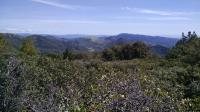 The view from the top of Hood Mountain. Thick tree and brush cover makes finding a vista point difficult.