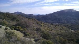 Sonoma Creek Valley