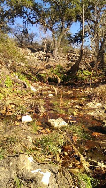 Tiny creek