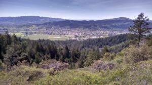 Sonoma Valley Again