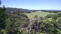 A view from the Warren Richardson Trail looking over the varied terrain at Trione-Annadel.