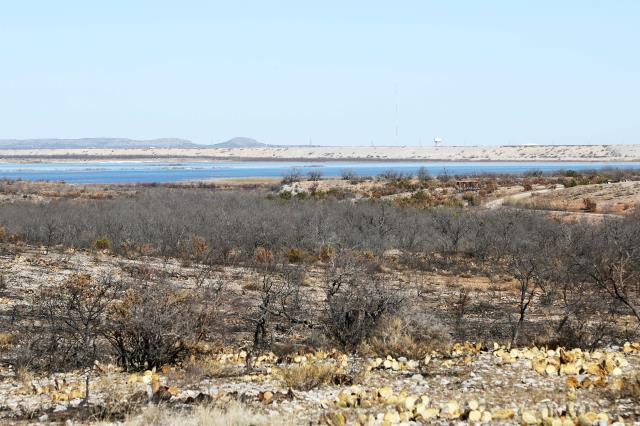 A View of a Burned Area
