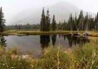 A Still Pond