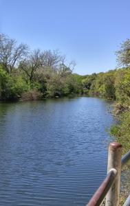 Pond at the SW end of the park