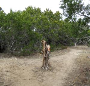 A touch of whimsy--a hat tree in the middle of the trail