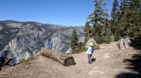 Pohono Trail