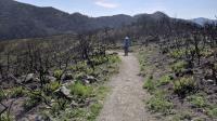 Lower Bald Mountain Trail