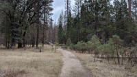 Opposite bank trail