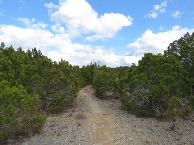 A typical stretch of trail