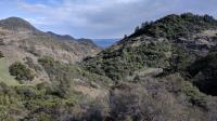Swartz Canyon