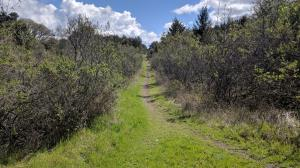 Orchard Trails