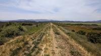 Sonoma Baylands Trail