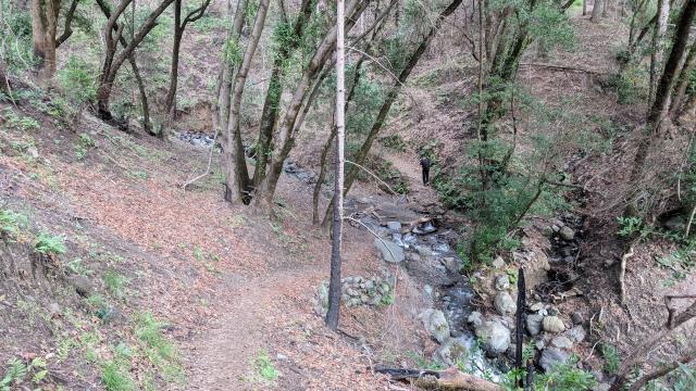 Pony Gate Trail