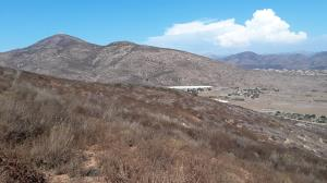 Mt. San Miguel