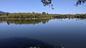 Lake Wilson
