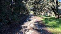 The trail in Sebastopol goes through neighborhoods and is usually shaded.