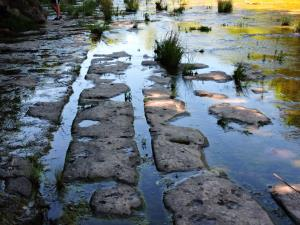ancient tracks