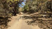 Vineyard Trail