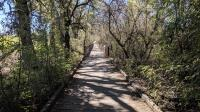 Bridges and boardwalks ensure trail users can make their way.