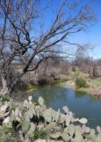 Scenic Loop View
