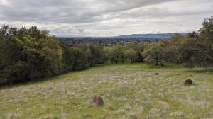 Sonoma Valley and beyond