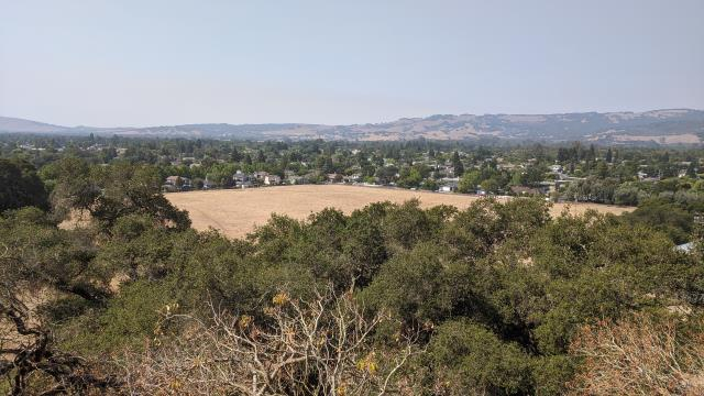 Looking over Sonoma