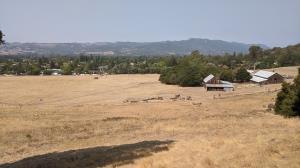 Looking toward Sonoma Mountain