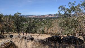 View of Sonoma