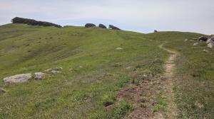 Prairie Ridge Trail