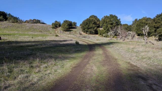 Camp Via Trail